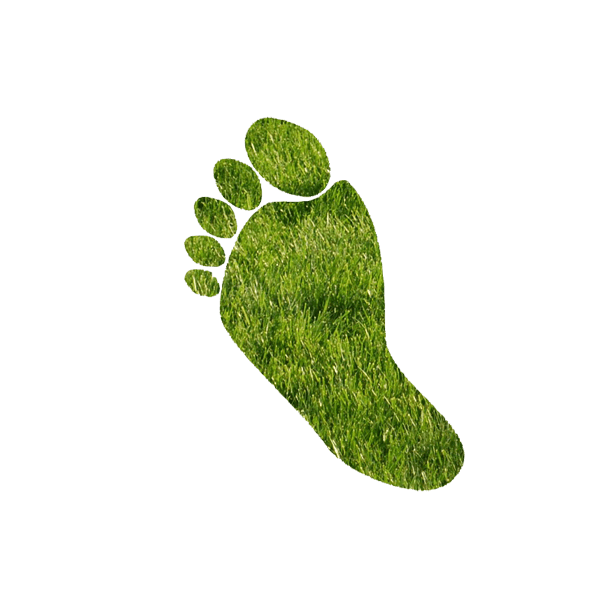 CO2 emissions are the ecological footprint of companies